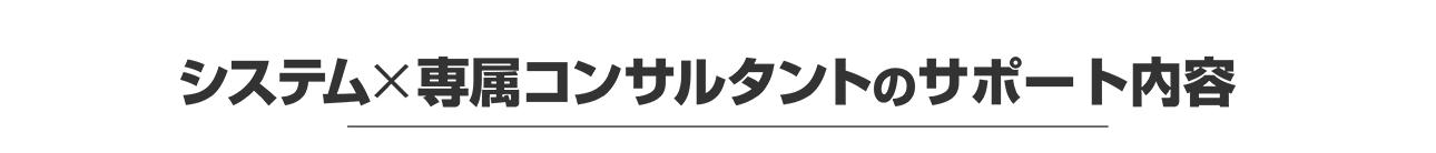 システム×専属コンサルタントのサポート内容